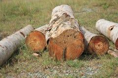 журналы складывают деревянное Стоковые Фотографии RF
