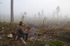 Ждать лоси Стоковая Фотография RF