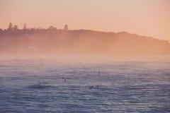 Ждать серферов Стоковая Фотография RF
