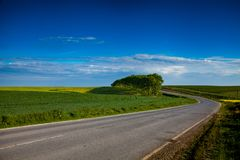 Заасфальтируйте дорогу среди полей стоковая фотография rf