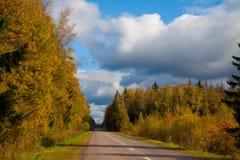 Дорога через древесину осени Стоковые Фотографии RF