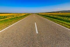 Заасфальтированная дорога через поля Стоковая Фотография