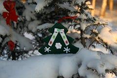 Забавляйтесь рождественская елка на ветви хвойного дерева в зиме Стоковое Фото