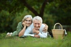 Забавные старые пары в парке лета Стоковое Изображение