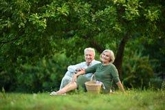 Забавные старые пары в парке лета Стоковая Фотография
