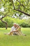 Забавные старые пары на пикнике Стоковые Изображения RF