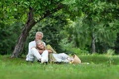 Забавные старые пары на пикнике Стоковые Фото