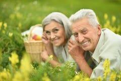 Забавные старые пары на пикнике Стоковое Фото