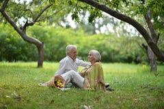 Забавные старые пары на пикнике Стоковая Фотография RF