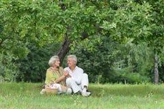 Забавные старые пары на пикнике Стоковые Изображения