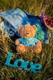 Забавляйтесь медведь, обручальное кольцо и влюбленность знака на траве Стоковые Изображения RF