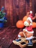 Забавляйтесь северный олень рождества в одеждах рождества сидя на деревянных розвальнях Стоковое Фото