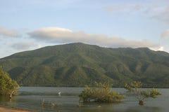 Заболоченное место лагуны Unare прибрежное в Венесуэле Стоковая Фотография RF
