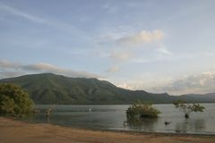 Заболоченное место лагуны Unare прибрежное в Венесуэле Стоковое фото RF