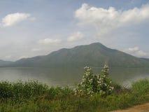 Заболоченное место лагуны Unare прибрежное в Венесуэле Стоковая Фотография