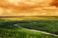 заболоченное место реки ландшафта пущи Стоковые Фотографии RF