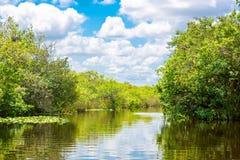 Заболоченное место Флориды, езда Airboat на национальном парке болотистых низменностей в США Стоковые Изображения RF