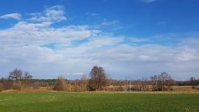 Заболоченные места в Luebars к северу от Берлина в зиме стоковое фото