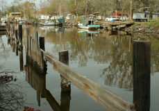 заболоченный рукав реки Луизиана Стоковые Фото