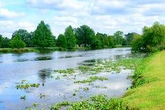 Заболоченный рукав реки Lafourche, Луизиана стоковая фотография