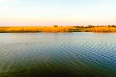 Заболоченный рукав реки Lafourche, Луизиана стоковые фото