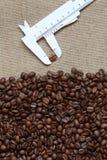 забор кофе фасолей стоковая фотография rf