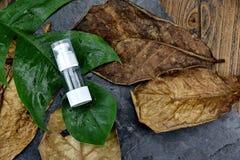 Забота кожи увлажнителя для кожи повреждения сухой, косметических контейнеров бутылки Стоковая Фотография