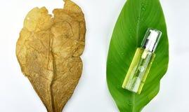 Забота кожи увлажнителя для кожи повреждения сухой, косметических контейнеров бутылки, пустого пакета ярлыка для клеймя модель-ма Стоковое Фото