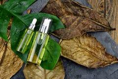 Забота кожи увлажнителя для кожи повреждения сухой, косметических контейнеров бутылки, пустого пакета ярлыка для клеймя модель-ма Стоковые Фотографии RF