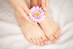 Забота руки и ногтя Красивые ноги и руки ` s женщин после маникюра и Pedicure на салоне красоты Маникюр курорта стоковое изображение
