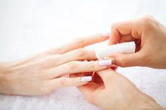 Забота руки и ногтя Красивые руки ` s женщин с совершенным маникюром Мастер маникюра держа пусковые площадки хлопка в руках День  стоковая фотография