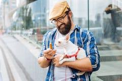 Заботя темн-с волосами предприниматель собаки обрабатывая его с едой стоковое фото