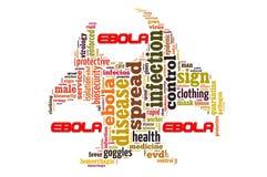 Заболевание Ebola стоковые фотографии rf