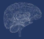 Заболевания мозга вырожденческие, Parkinson, синапсы, нейроны, стоковое изображение rf