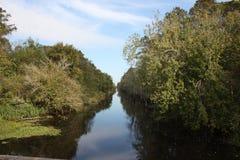 Заболоченный рукав реки Луизианы Стоковая Фотография RF