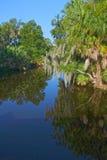 Заболоченный рукав реки Нового Орлеана Стоковые Изображения RF