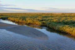 Заболоченный рукав реки Lafourche, Луизиана стоковое фото