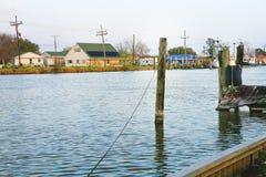 Заболоченный рукав реки Lafourche, Луизиана стоковые изображения rf
