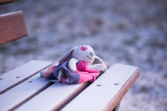 Забытая игрушка на стенде Стоковая Фотография RF
