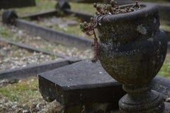 Забытое тягчайшее ` мыслей ` вазы Стоковая Фотография