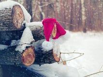 Забытые виды шляпы Санта Клауса на журналах Стоковые Фотографии RF