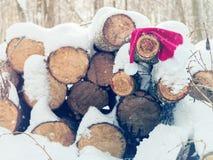Забытые виды шляпы Санта Клауса на журналах Стоковые Изображения RF