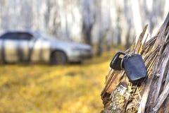 Забытые ключи автомобиля на дереве в лесе осени, предпосылке запачканного автомобиля стоковая фотография rf