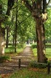 забытый парк Стоковые Фото