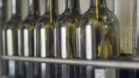 Завалка бутылок оливкового масла в разливая по бутылкам фабрике акции видеоматериалы