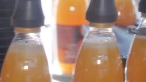 Завалка пластиковых бутылок с продуктами сток-видео