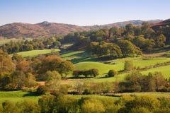 завальцовка сельской местности английская Стоковое Изображение RF