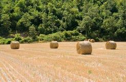 завальцовка haystack сельской местности Стоковое фото RF