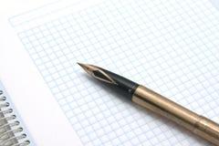 заверните белизну в бумагу Стоковые Фото