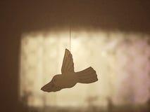 Заверните птицу в бумагу Стоковое Изображение